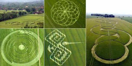 Bentuk CROP CIRCLE mengesankan garis-garis meditatif